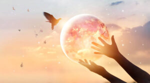 transformation, healing the earth