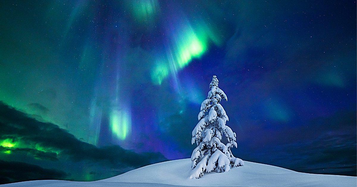 transmutation news december 2015 1200x630